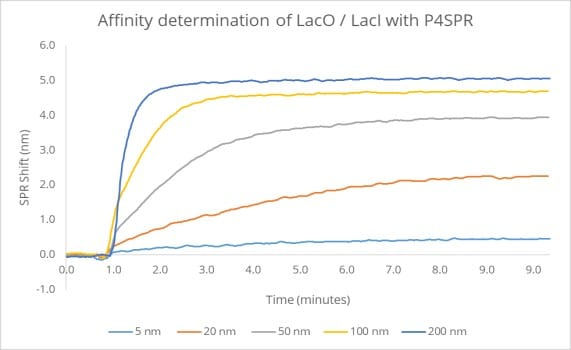 Figure 6. Superimposed binding curves of increasing lacL concentrations.