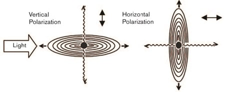 Figure 2: Scattering from different polarizations
